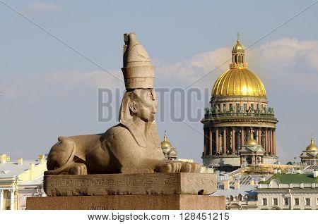 Russia. Saint-Petersburg. Granite Sphinx in the background Isaakievskogo Cathedral.