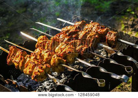 Chicken And Veal Kebabs Barbecues On Skewer Grill