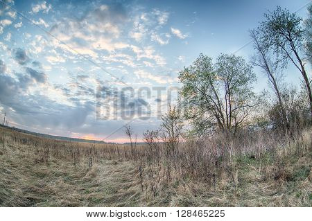 Sunrise HDR landscape in field and trees with fisheye effect