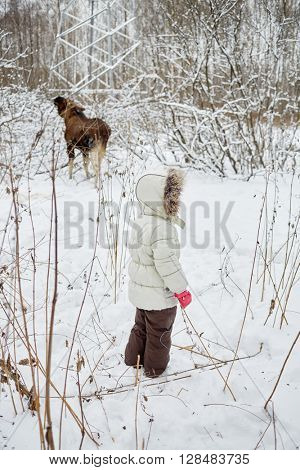 Child dressed in warm clothes looks at elk feeds in winter park.