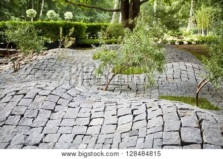 Young trees growing through granite waving pavement in park.