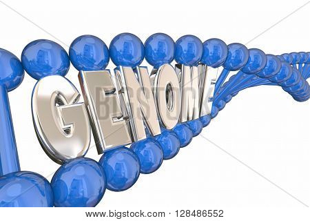 Genome 3d Illustration Word DNA Strand Genetics Heredity