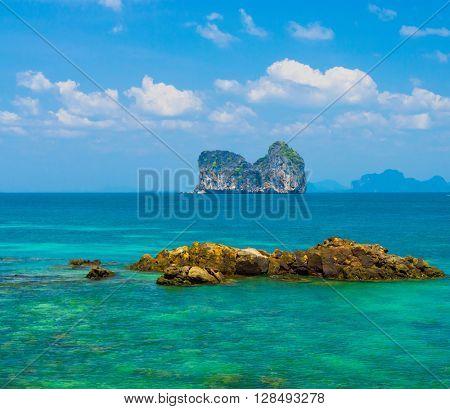 Sunny Waters Marine Fantasy