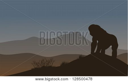 Gorilla silhouette in the hills at night