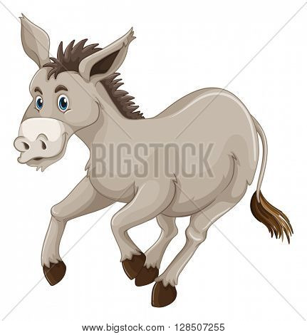 Donkey on white background illustration