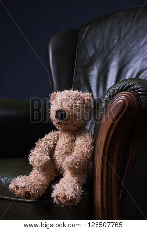 Teddy Bear Sits In A Green Leather Armchair In Front Of The Wall