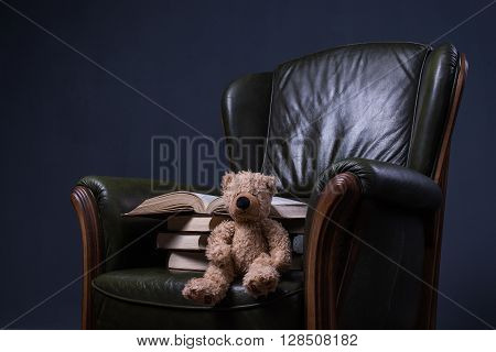 Teddy Bear And Books In Green Leather Armchair In Front Of The Wall