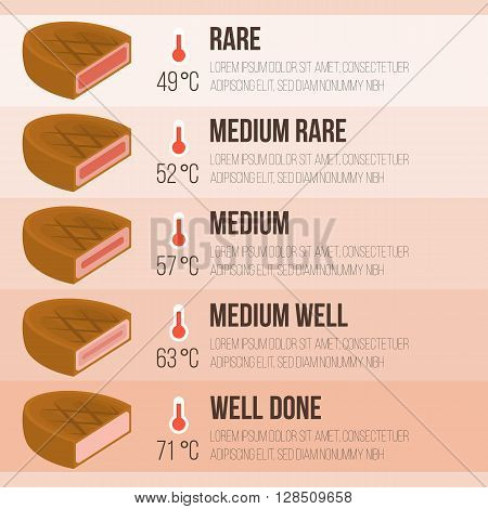 Vector info graphics steak and temperature with detail