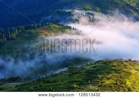 Beautiful Carpathian mountains in spring time, Ukraine, Europe.