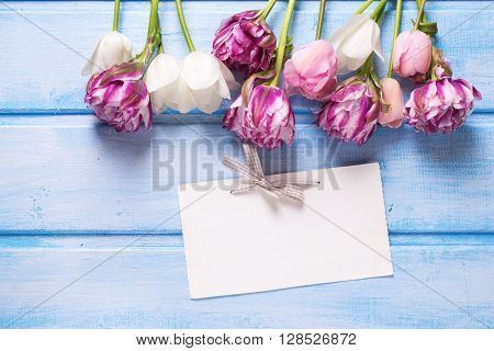 Violet white and pink spring tulips and empty tag on blue wooden background. Selective focus is on tag. Place for text.