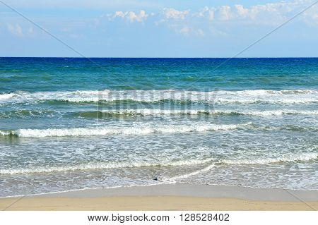 sea and beach in a summer day in Ostuni Apulia mediterranean Italy