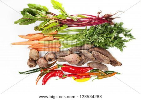 Bunch of beet leaves carrots beetroot and chilli pepper on white background