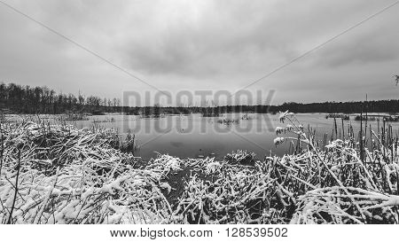 Polish landscape. Frosty winter day at the lake