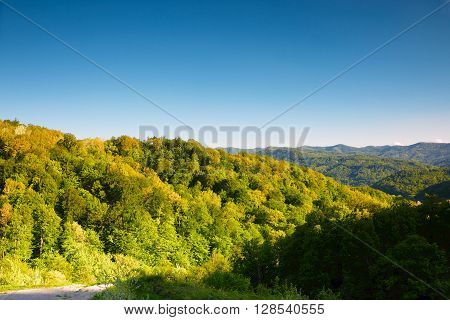 Beautiful summer landscape in the Caucasus mountains at sunrise