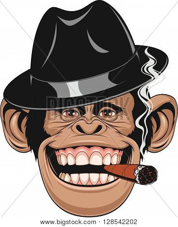 Vector illustration of funny chimpanzee hat gangster smoking a cigar and laughing