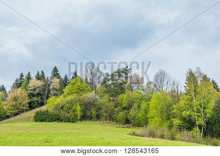 Green hills on Solina lake shore (Bieszczady mountains, Poland), in the beginning of May