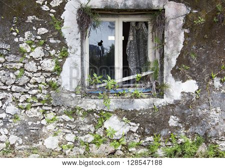 The broken window of an abandoned house in Tadine town on Mare island (New Caledonia).