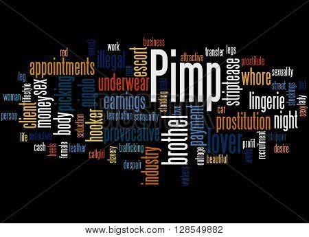 Pimp, Word Cloud Concept 9