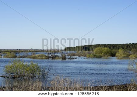 Spring flooding sunny evening in Russian countryside