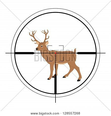 Vector illustration of a rifle crosshair aiming a deer. Deer target of hunting