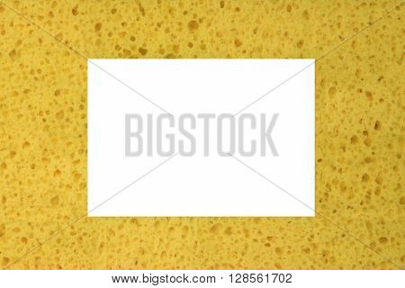 New Absorbent Sponge Background With White Copy Space