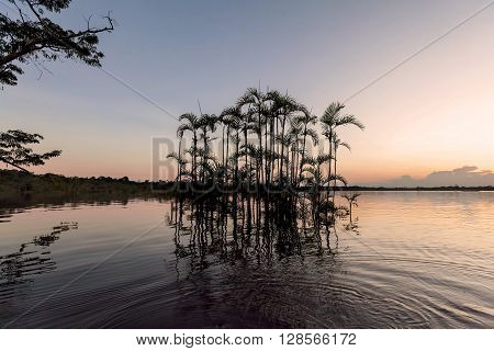 Laguna Grande At Sundown In Cuyabeno Wildlife Reserve South America