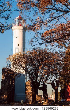 Old lighthouse in Colonia del Sacramento Uruguay