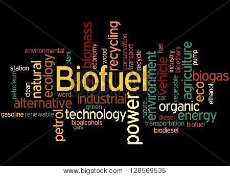 Biofuel, Word Cloud Concept 6
