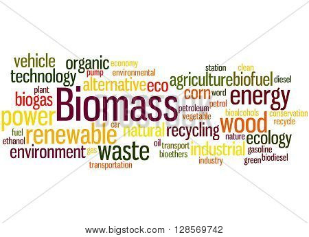 Biomass, Word Cloud Concept 4