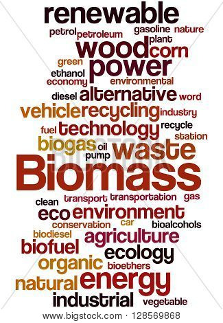 Biomass, Word Cloud Concept 7