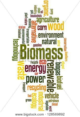 Biomass, Word Cloud Concept 8