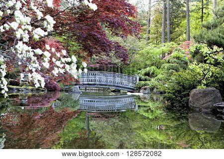 Zen like Japanese gardens in Manito Park.