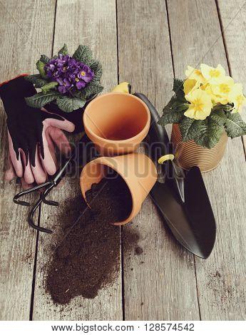 Gardening tools on the floor