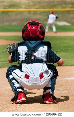 Young baseball catcher squatted behind home plate.