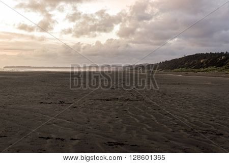 Pacific Beach state park in Washington State