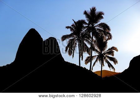 Sunset in Ipanema Beach with Palm Trees and Two Brothers Mountains