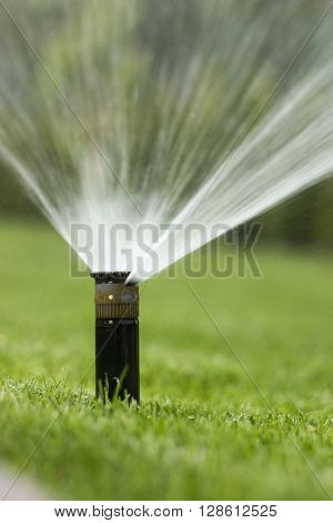 nozzle automatic watering system against a background of green grass