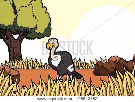 vulture savanah safari scene .eps10 editable vector illustration design