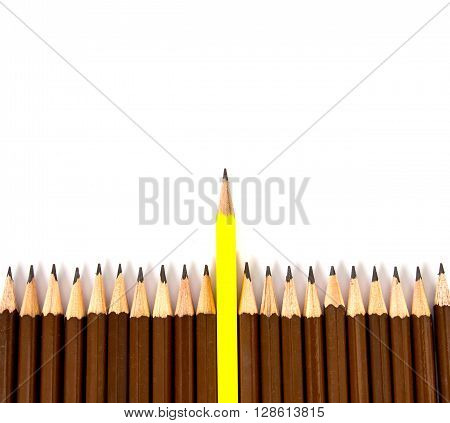 the wooden pencil with one different as a symbol of difference concept
