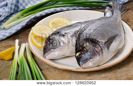 Fresh Uncooked Dorado Or Sea Bream On Plate