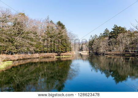 Reflection of Lake