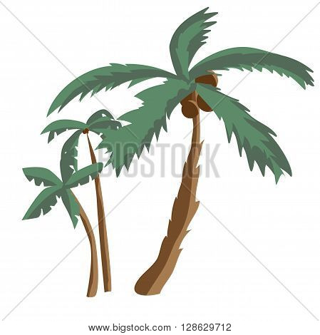Coconut palm trees isolated on white background. Palm tree on a sunny summer day vacation. Vector flat illustration