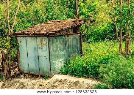 Shot of a pantry in the forest for made to store some wood in it