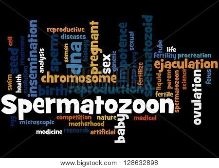 Spermatozoon, Word Cloud Concept 6