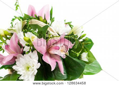 flower orchid and freesia, isolated on white background