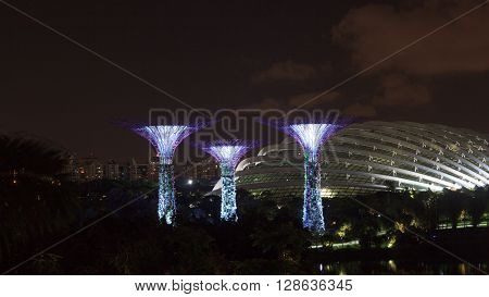 Singapore, Singapore - January 14, 2016: Supertree grove and conservatory at night in Gardens by the Bay. Supertrees are tree-like structures that dominate the Gardens landscape. Gardens by the Bay is a park in central Singapore.