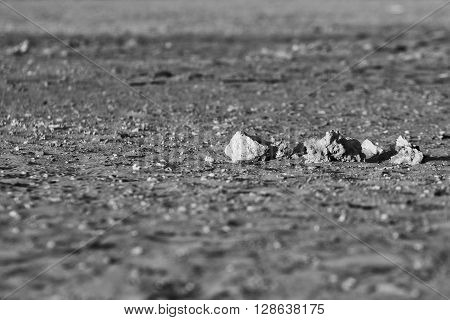 looking Lunar landscape of bare stony ground with several sharp stones with fine stone grit