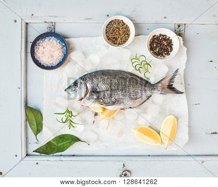 Fresh uncooked sea bream fish with lemon, herbs, ice and spices on rustic blue wooden board backdrop, top view