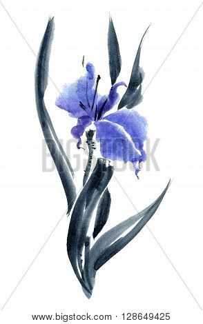 Iris. Watercolor and ink painting in style gohua sumi-e u-sin. Oriental traditional painting.