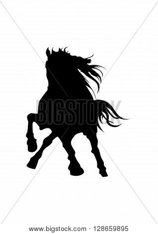 Black vector silhouette of a stallion isolated on white background.